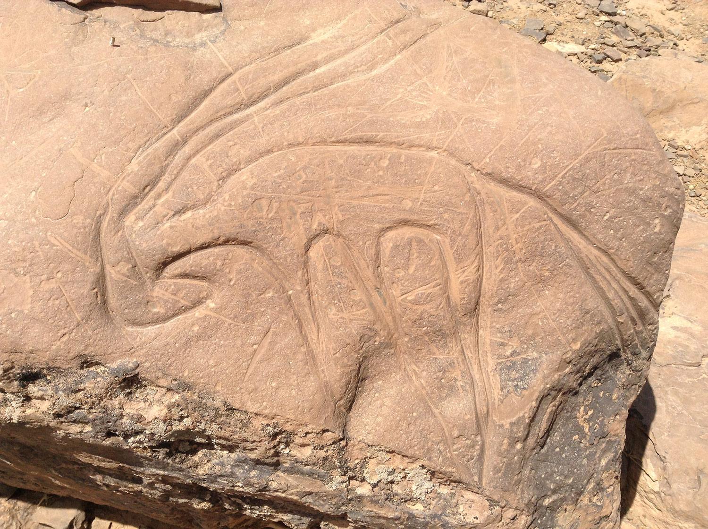 Prehistoric rock art in Morocco