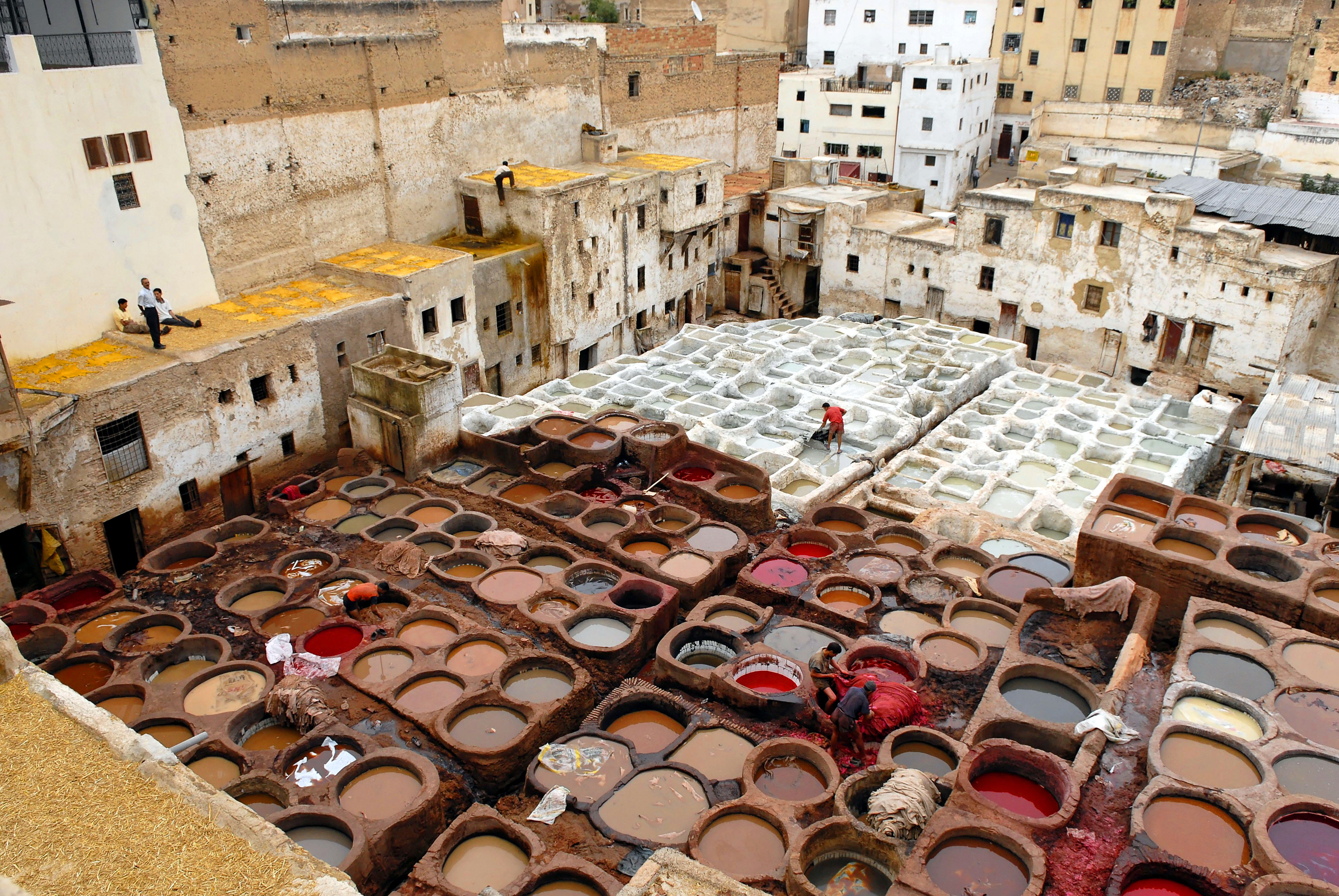 Fes, Morocco - private guided tours in Morocco with Wild Morocco