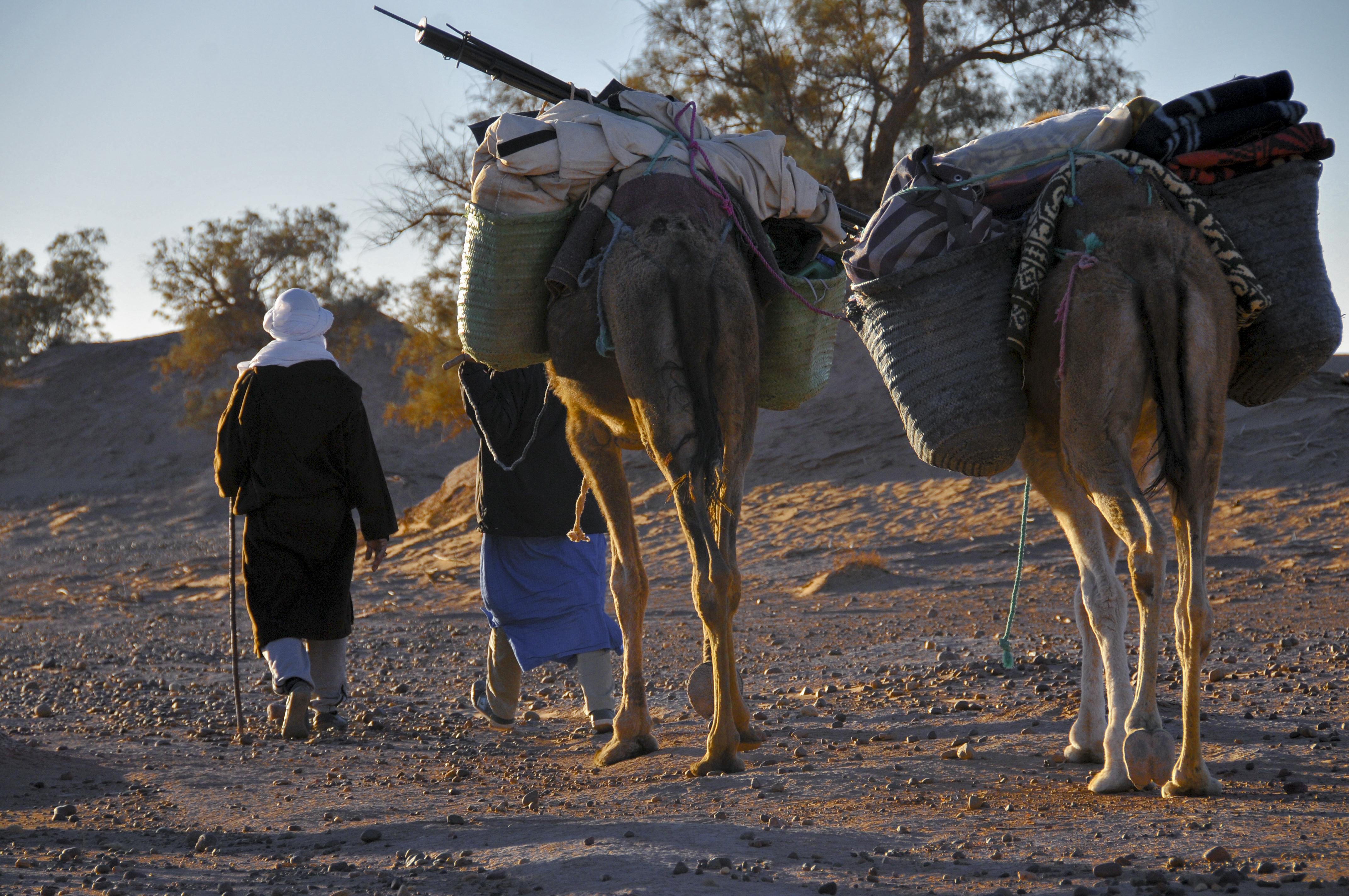 Alternative Activity Holidays in Morocco