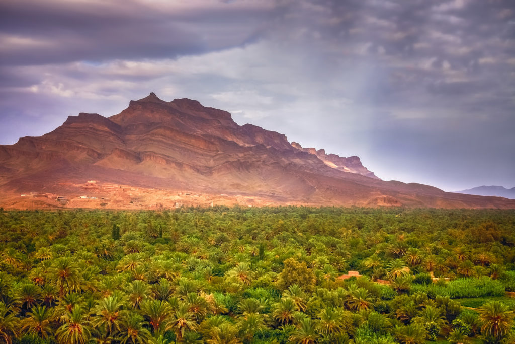 Agdz Draa Valley - Wild Morocco